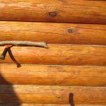 Что такое конопатка сруба и зачем ее делают?